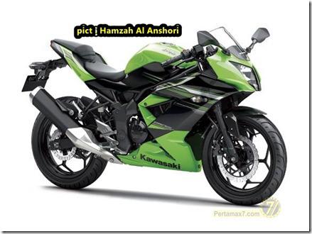 kawasaki-ninja-250-rr-mono-12_thumb