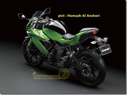 kawasaki-ninja-250-sl-hijau_thumb