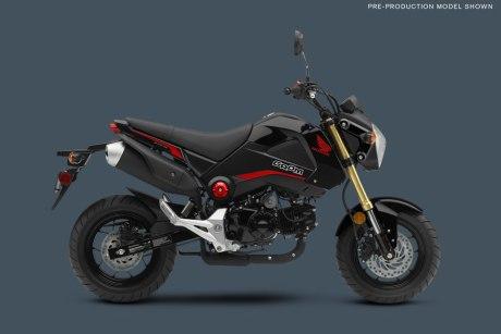 Honda-Grome-2015-01