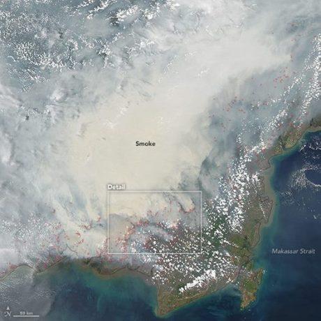 pulau kalimantan tertutup asap