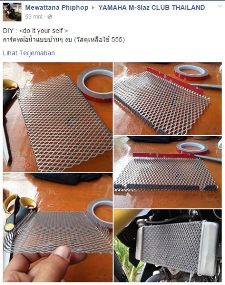 pelindung radiator (1)