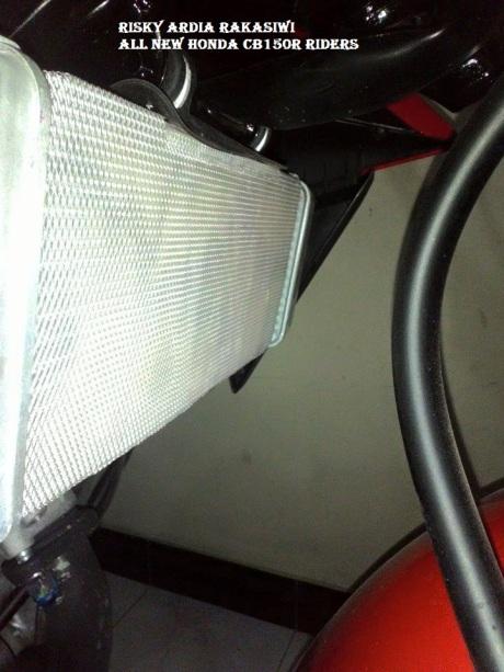 pelindung radiator