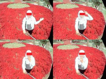 selfie di kebun baturaden (4)