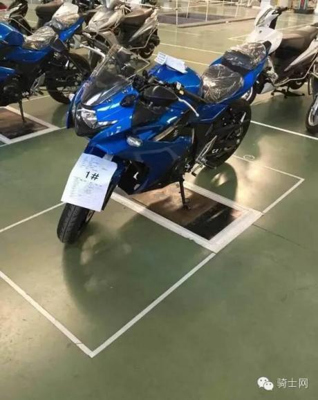 sport suzuki fairing gw250 (3)
