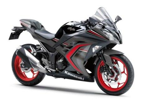 Kawasaki Ninja 250 ABS Special Edition (2)