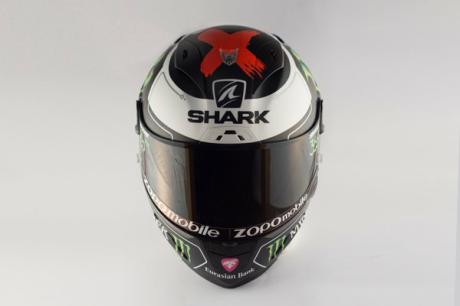 shark lorenzo (4)