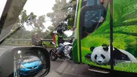 biker hadang bus lawan arus